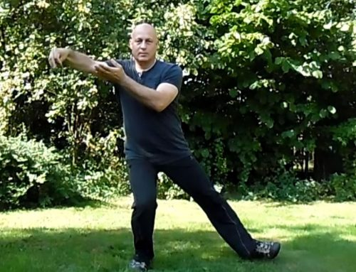24 Tai Chi vorm – Lage zweep en gouden haan staat op een been