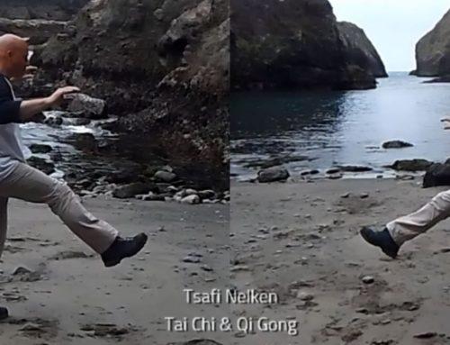 24 Tai Chi vorm – Links om draaien en trap met links