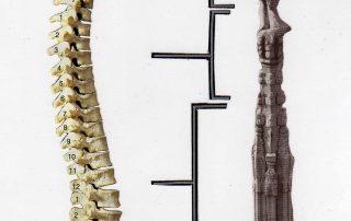 Oefeningen voor de rug - Qigong