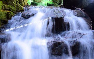 Vijf elementen Qigong - element water