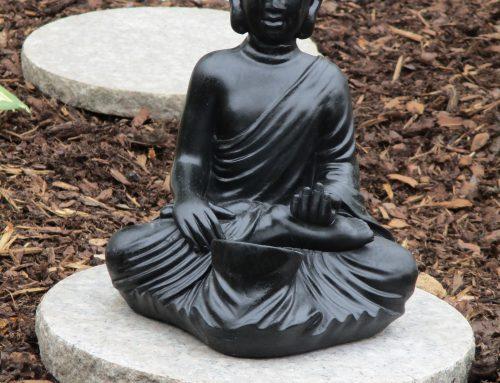 Falun Gong oefeningen Buddha Showing 1000 hands