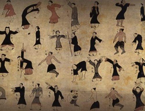 Wu Qin Xi – Five Animals QiGong (case study)