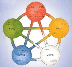 De vijf elementen medische qigong workshop